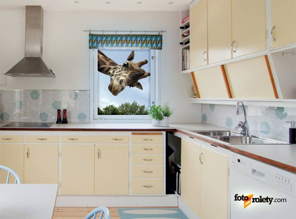 Zdjęcie Jak Udekorować Okno W Kuchni Galeria Dekoracje